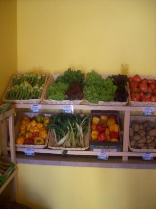 Arcobaleno di verdura colorata